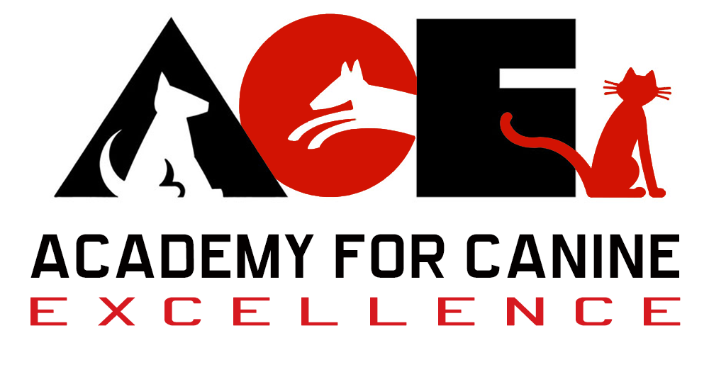 ACE - Academy for Canine Excellence Logo