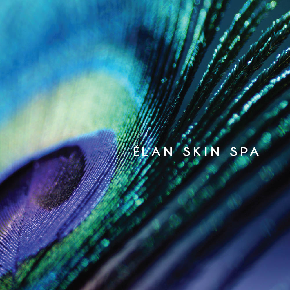 Elan Skin Spa Catalog